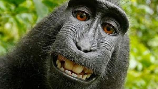 naruto selfie